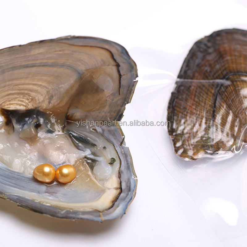 Double Gold 7-8mm Rice Pearl AAA Grade in Freshwater Oyster for Gift