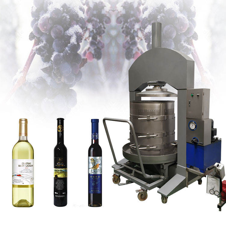 CE approved automatic ice grape press machine for wine