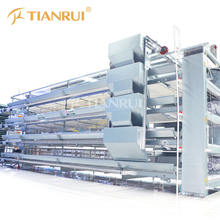Automatic Poultry Battery Cage for Layer Chicken