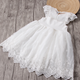 Foreign trade wholesale summer girl dress pure color lace embroider fly sleeve princess dress kids flower wedding dress
