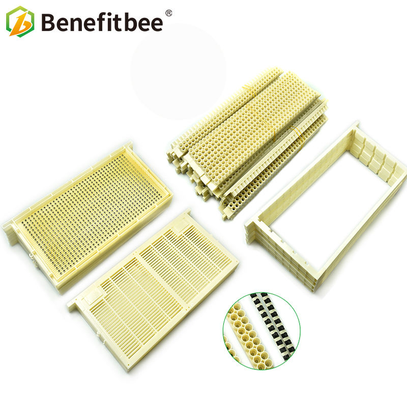 4pcs Hive Bar Frame Combs with 50pcs Plastic Queen Bee Incubation Cell Cups