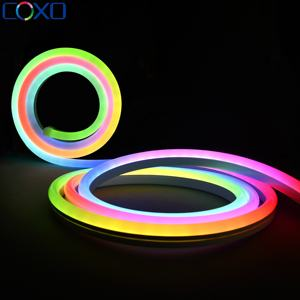 Dome Surface WS2811 WS2812B SPI RGB Colorful light Addressable Neon Led Strip