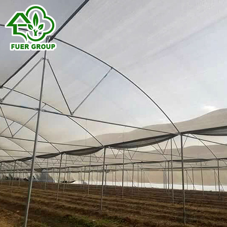 Steel structure Farm Used Tropical Greenhouses for India