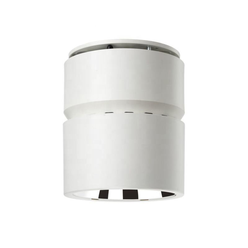 36 W 3800lm 6500 K IP65 Greenspace SM294C LED40/865 Indoor opbouw Philips LED Downlight