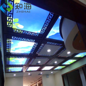 Interni decorativi decorazione dell'hotel materiale traslucido pvc mattonelle del soffitto