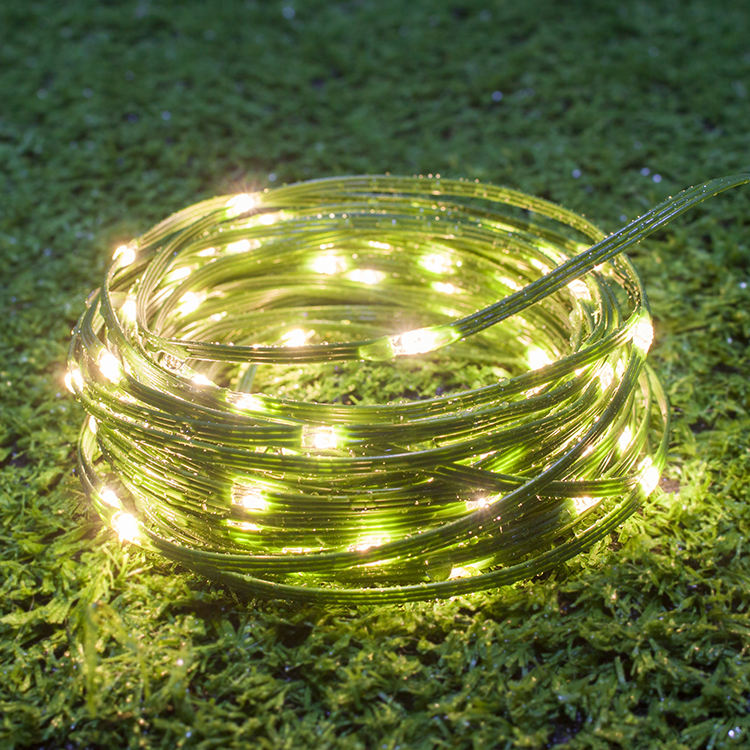Professional Garden 3mm Led Replace String Light