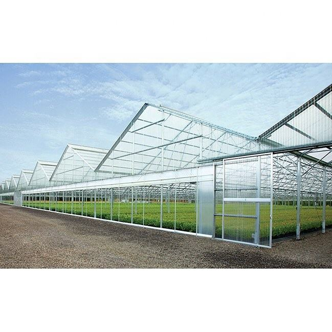 China prefab steel frame green house for hydroponic system indoor