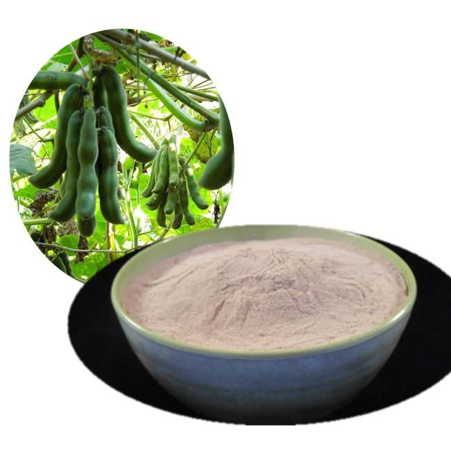 Natural plant extract For Parkinson's Disease mucuna pruriens extract Levodopa 98%