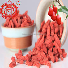 China wolfberry gouji berry gou qi zi for sale