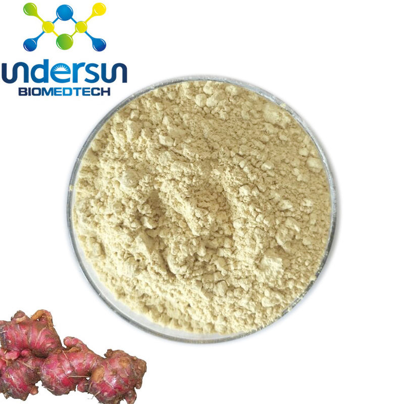 Factory supply natuurlijke Gingerols 10% 15% 20% Rode Gember Extract