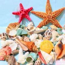 new products sea Theme Natural Colorful Shells Starfish sea decoration