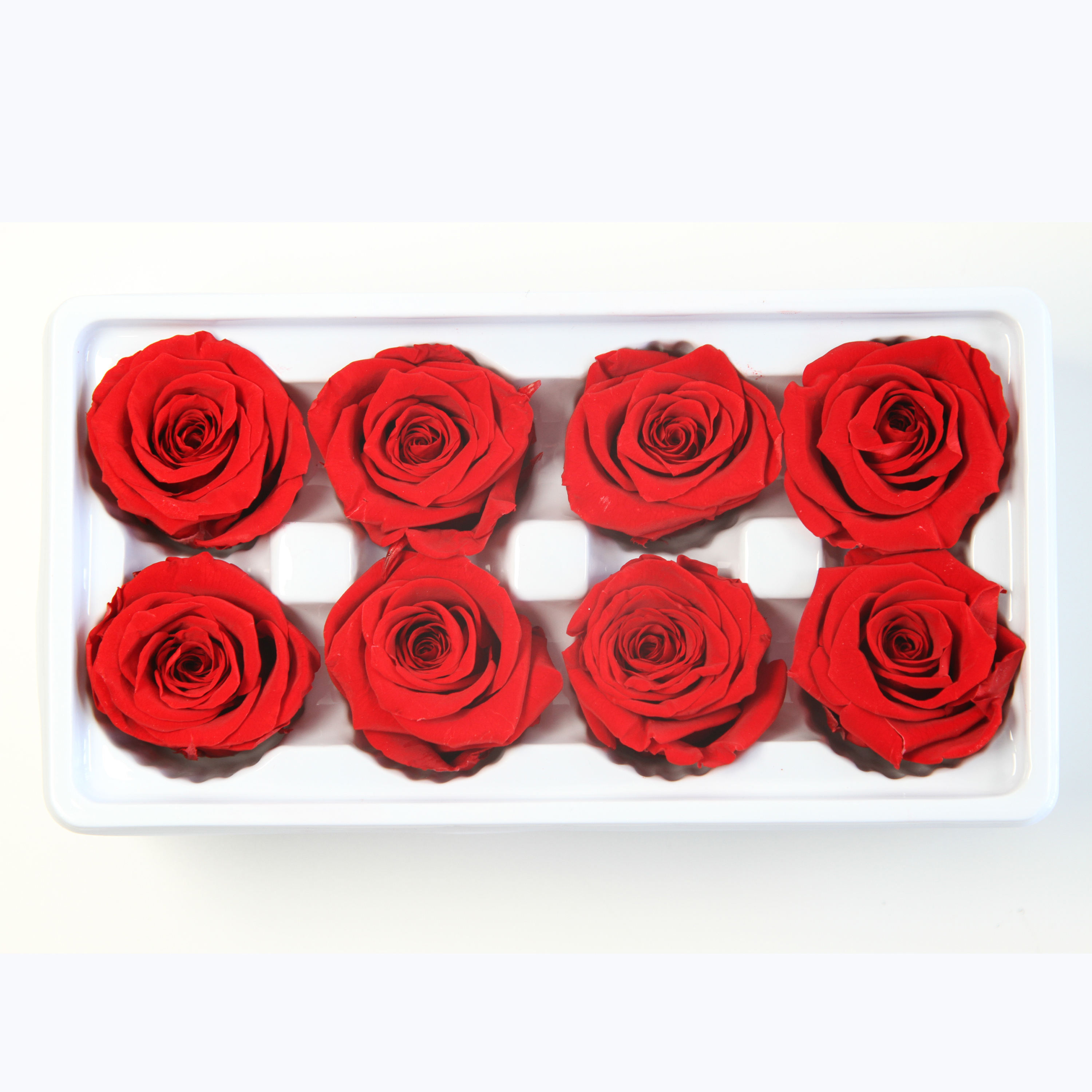 Special Offer 4-5cm Preserved Roses Head Long Lasting For Home Decor Natural Eternal Forever Immortal flower