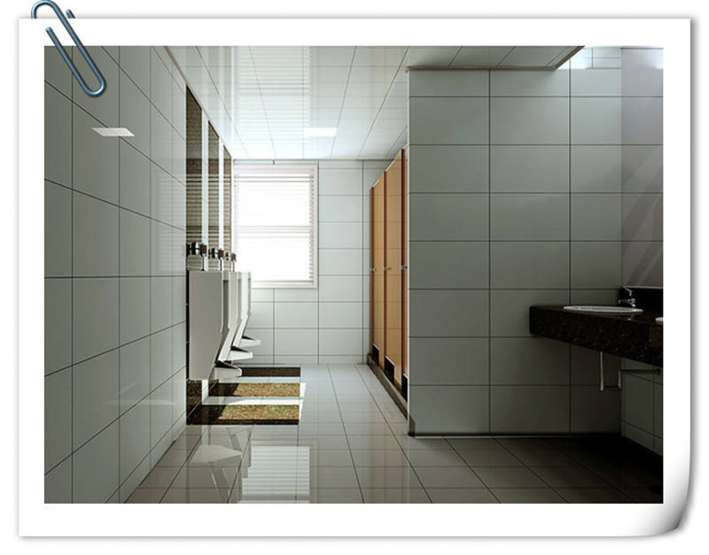 Compact Laminate Toilet Door/Toilet Cubicle