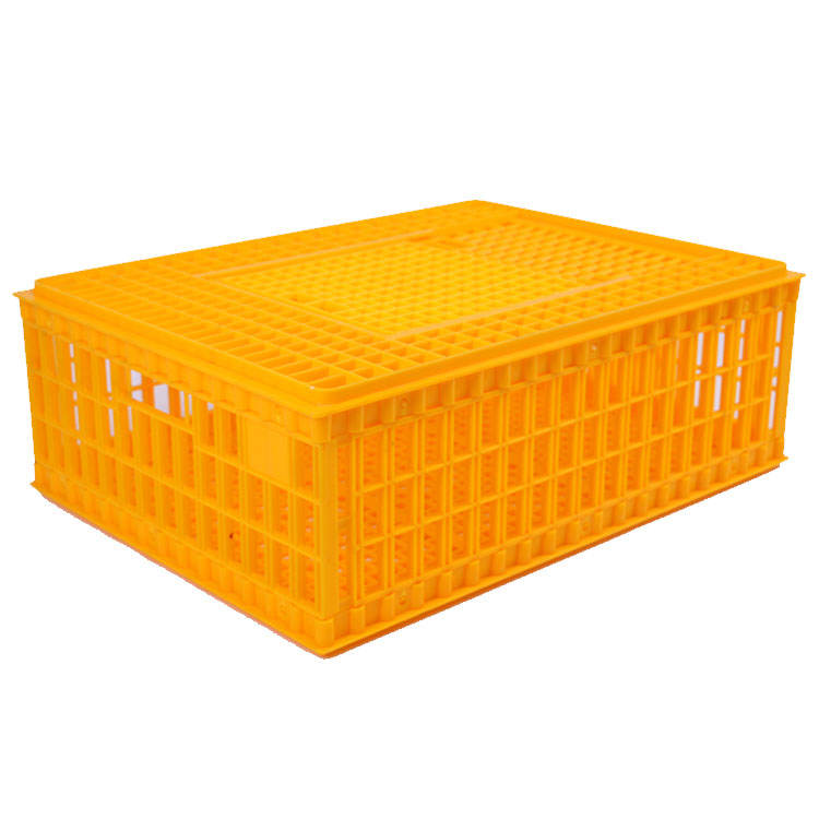 Customized plastic transport chicken box for chicken/duck/goose/cock/broiler