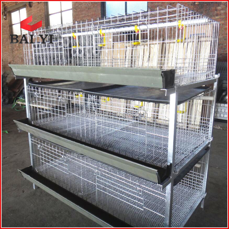 professional poultry feed system for chicken and broiler/broiler chicken cage/broiler cage system