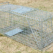 Collapsible One-door Live Animal Cage Trap ,Stray Cat,Groundhog, Opossum,Armadillos