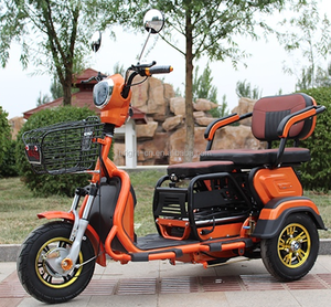3 ثلاث عجلات سكوتر ebike electric tricycle المألوف للكبار