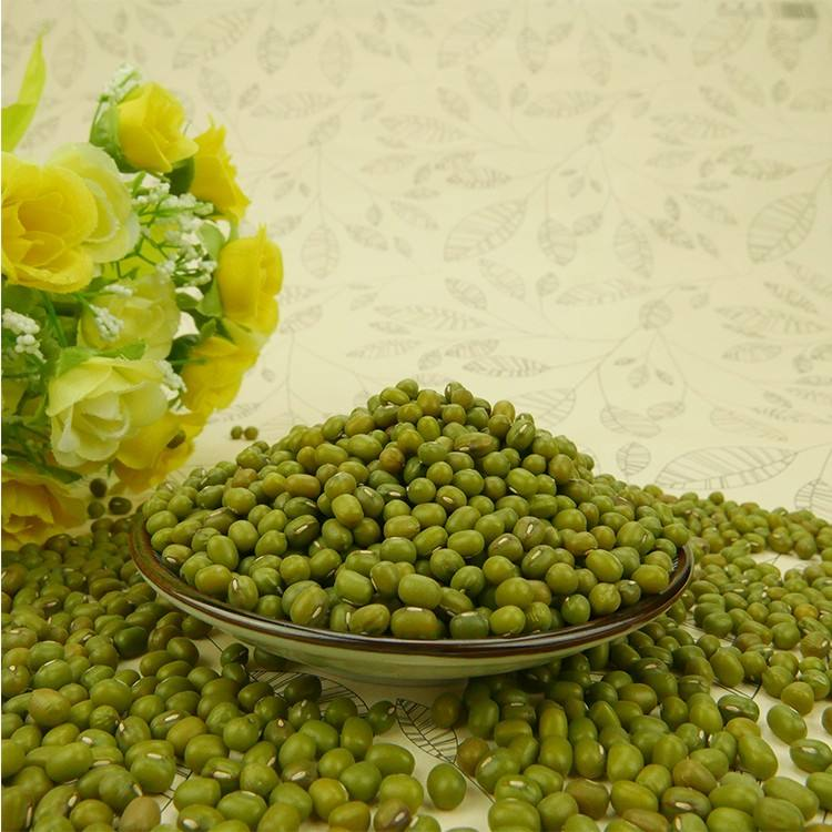 High Sprouting Rate SMALL Green mung beans For Sale