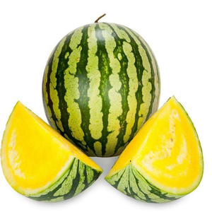 F1 Hybrid Yellow Flesh Watermelon Seeds(not seedless) for Growing