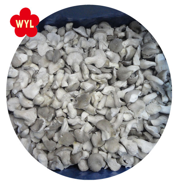 china reliable price iqf baby oyster mushroom