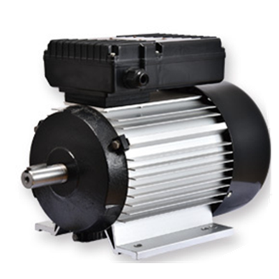 Drip-proof [ Ac Motor ] Ac Motor YL90S-2 Three-Phase Asynchronous Light Weight Ac Induction Motor