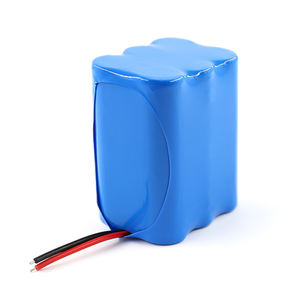 Rechargeable 6000mAh 12V Lithium Battery Pack 18650 Fast Delivery