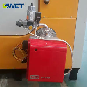 Quick loading condensing induction gas fire steam boiler for chemical industry