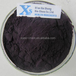 High Quality GMP standard Natural Acai berry Extract
