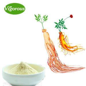 High quality 10% Ginsenosides korean red ginseng extract with ISO certificate