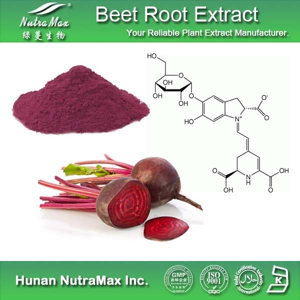 Thực Phẩm Bổ Sung Sugarbeet Chiết Xuất/Beetroot Chiết Xuất Betaine Khan