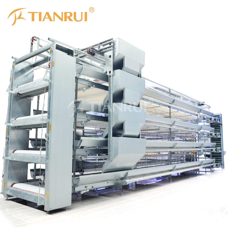 Poultry Farm Equipment Automatic Chicken Layer Battery Cage for Sale