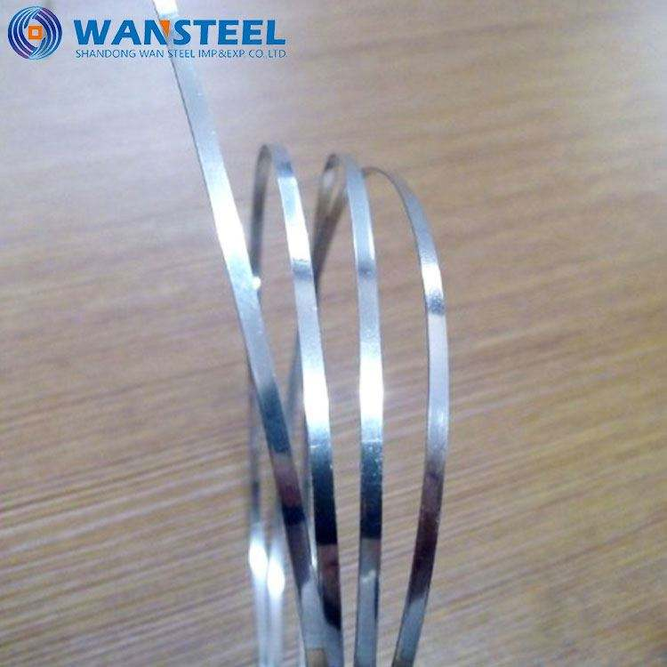 aisi 304 Stainless Steel Strip/Tape /Band