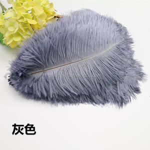 Factory sale White and dyed colors 25-30cm Bulk Ostrich feathers