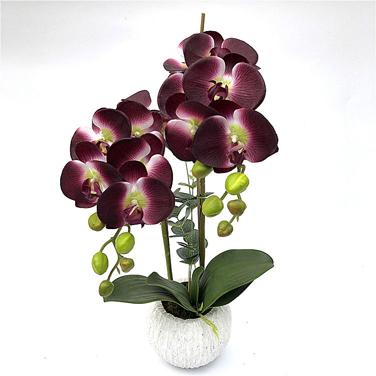 10Heads Artificial Flower Butterfly Orchid flower Artificial Bonsai Phalaenopsis Orchid plant Set Real Touch flower