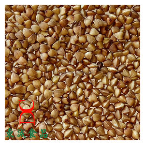 Organic roasted buckwheat cereal wholesale