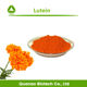 Top Quality Lutein 80% HPLC Extract Marigold Flower For Eye Care Product