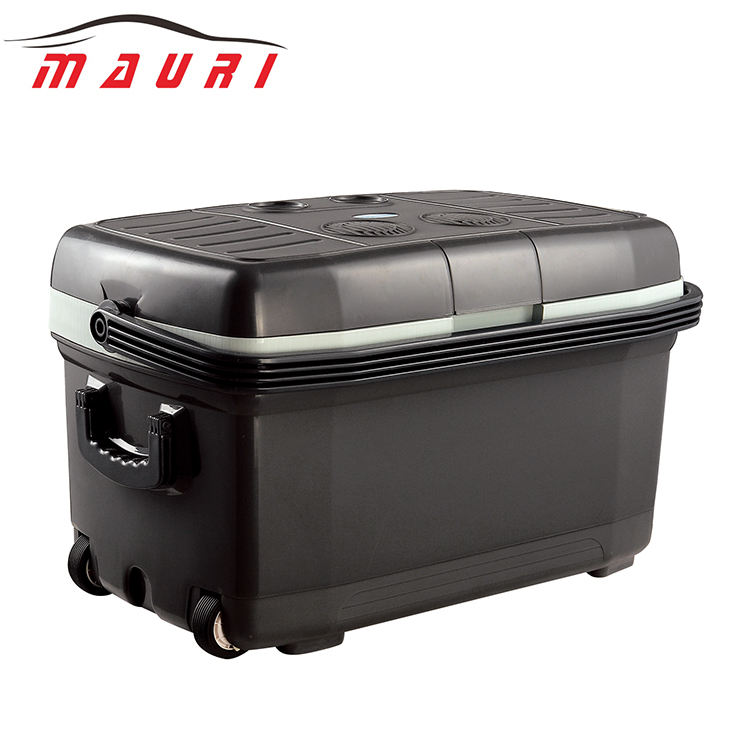 Blood Cooler Box 12V 24V 70W 45L Large Plastic Beer Blood Insulin Fishing Electric Camping Ice Cooler Box Plastic