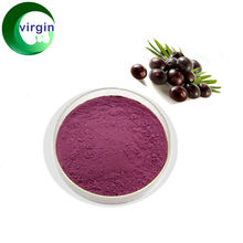 Hot sell Acai 10:1 berry extract powder acaiberry extract