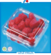 China supplier clamshell pp plastic fruit container packaging