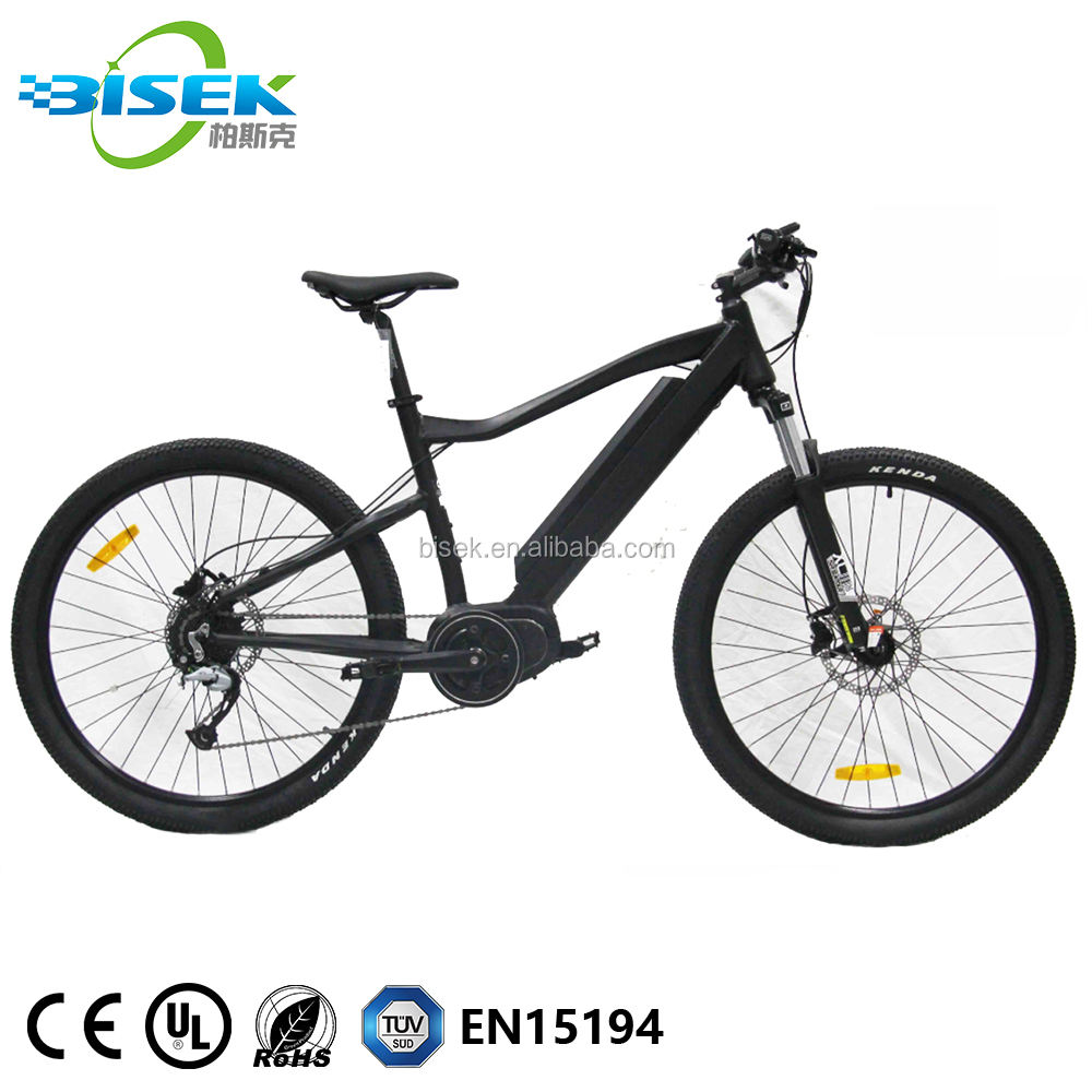Powerful E Bike 48V 1000W Bafang Ultra Mid Motor Drive Mountain Electric Bike For Off Road Usage