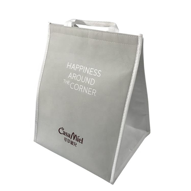 Promotional gray Color Small Cake Freezer Cooler Bag For Outdoor Picnic