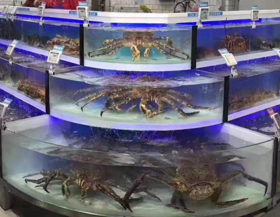 Dingfeng customized supermarket or restaurant 3 layer chiller live king crab tank aquarium