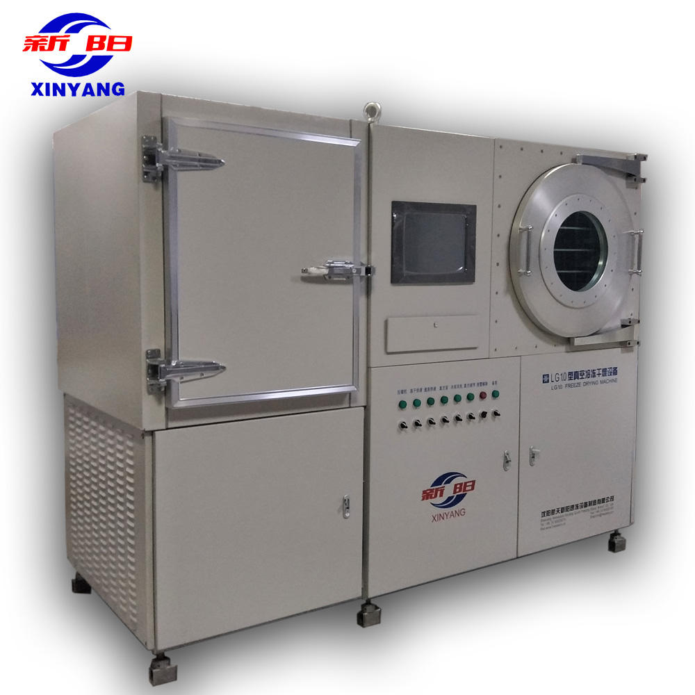 China lab scale pilot vacuum freeze drying machine for freeze dried food processing craft research