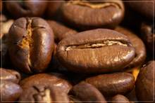 Coffee beans: roasted, green, blended