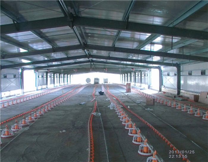 Prefab steel structure design chicken farm building controlled poultry sheds buildings for sale