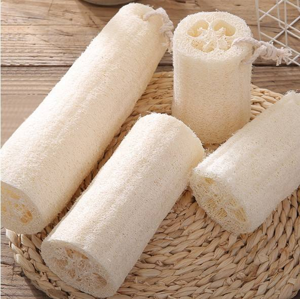 Natural loofah sponge used for washing dishes/ bath