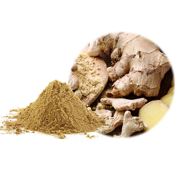 Wholesale Organic Pure Ginger Powder