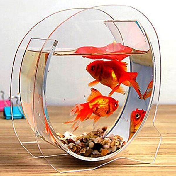 Tabletop Acrylic Mini Fish Tank Acrylic Aquarium Fish Tank Custom Acrylic Fish Tanks Aquarium