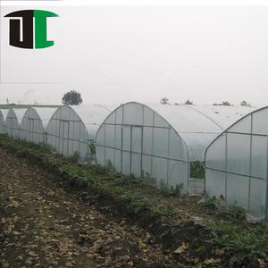 Hot selling pop up cheapest tunnel film greenhouse 40x40x120 use mylar tent fabric for tomato grow