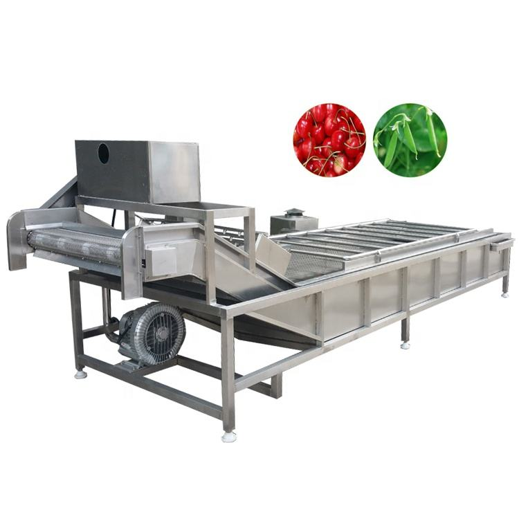 Export good quality brush fruit industrial vegetable washing machine